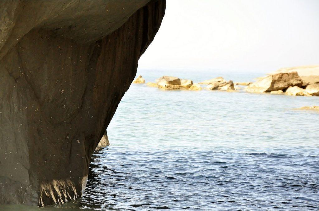 Muszle wtopione w skałę